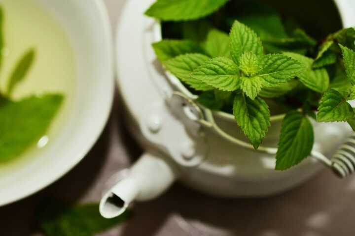 Is Green Tea Better Than White Tea